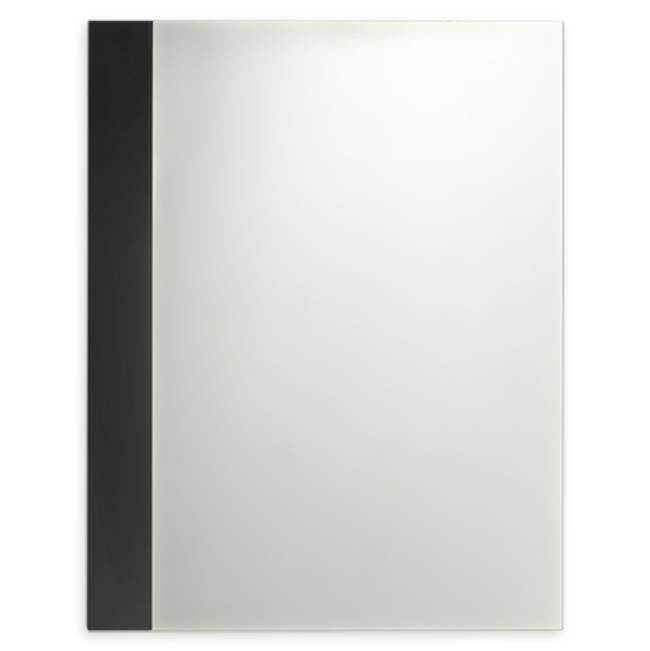 American Standard Rectangle Mirrors item 9205101.339