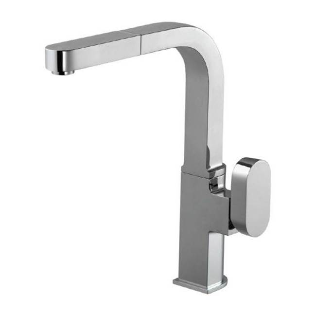 Hamat Pull Out Faucet Kitchen Faucets item REPO-2000-GR