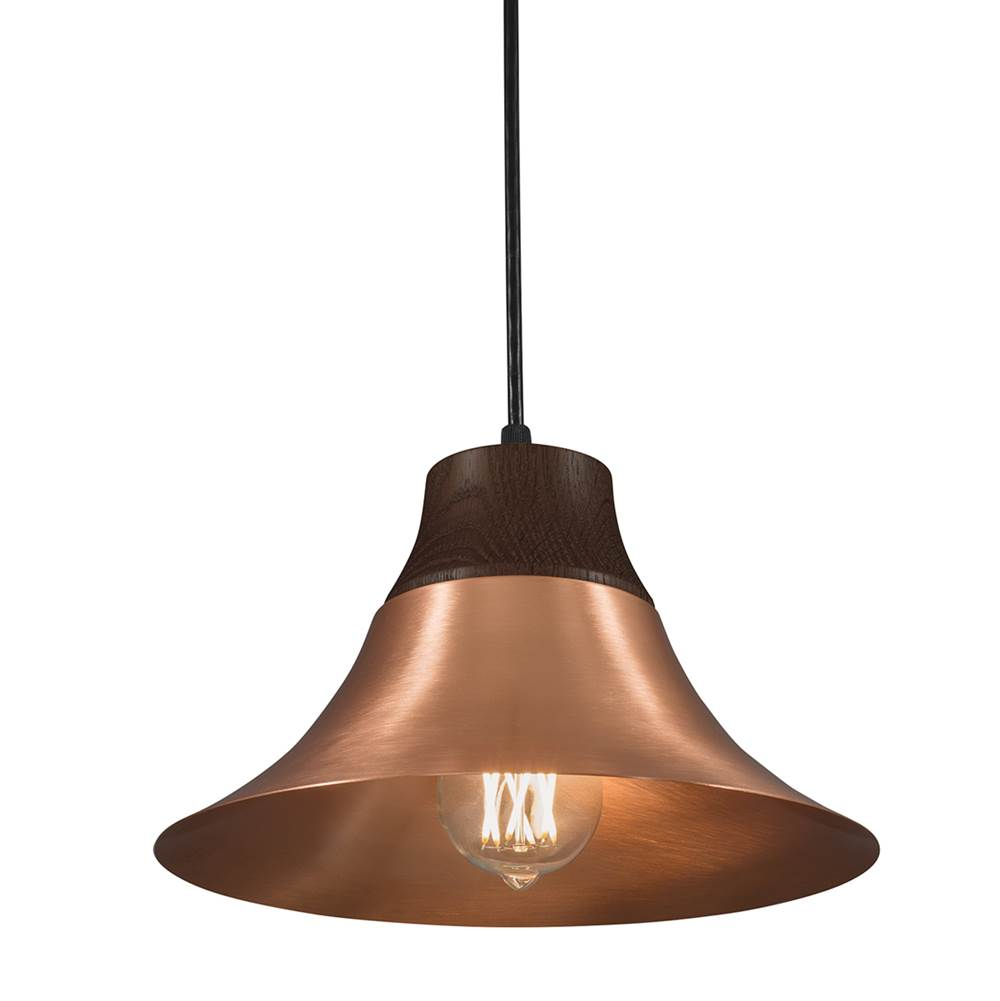 Norwell  Pendant Lighting item 5275-CO-NG